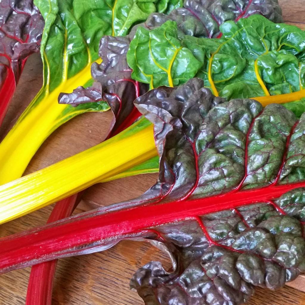 rainbow chard recipe