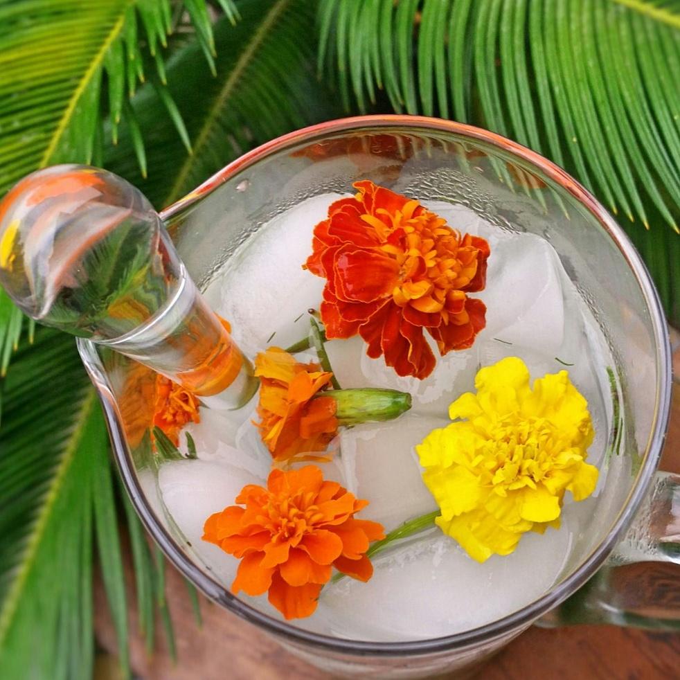 Clovers & Kale - Summer Water - Herbal Beverage - Edible Flowers