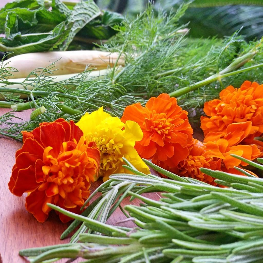 Clovers & Kale - Summer Water - Herbs